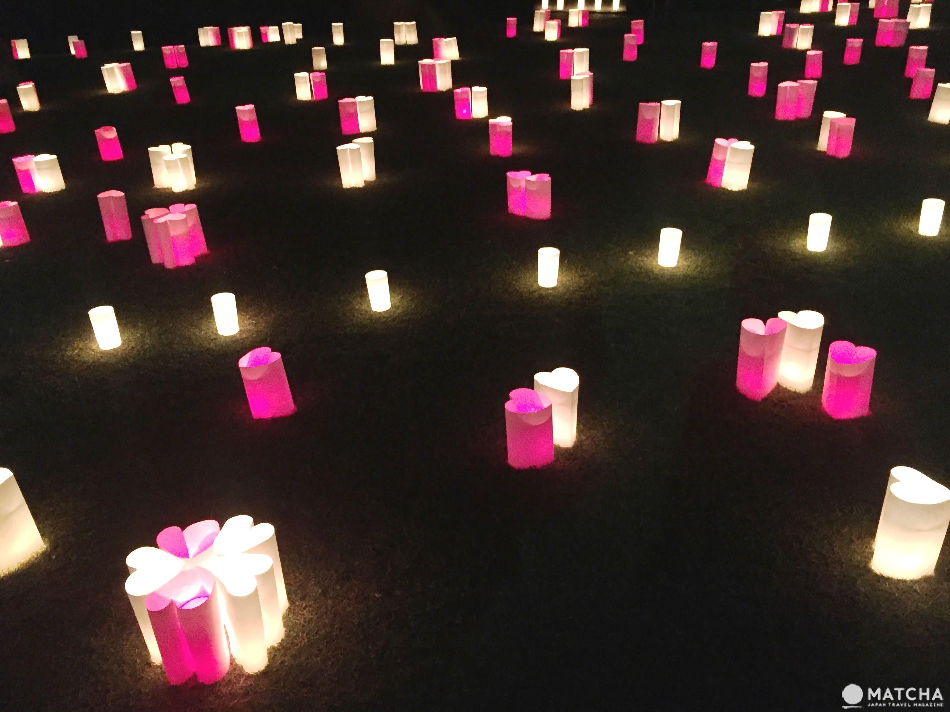 2萬盞燈花奈良綻放 點亮古城美景