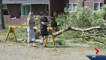 Storm in North Battleford knocks down trees, floods streets