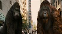 Rise Of The Planet Of The Apes: San Francisco Rampage