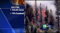 Investigators looking into cause of Rim Fire