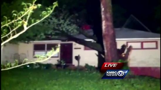 Wind blows tree onto south KC home