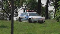 Police investigate sexual assault in Crotona Park