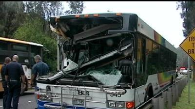Tree Falls On City Bus; Leaves Bus Driver Injured