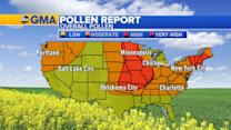 High Pollen Count From the Plains to the Northeast