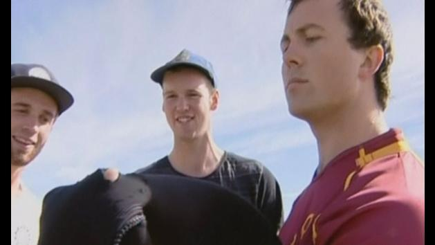 Man survives shark attack by fighting back