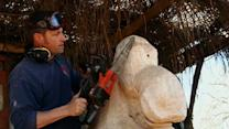 A Lesson in Chainsaw Carving
