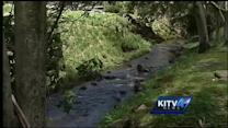 New pesticide study details contaminants in Hawaii's streams