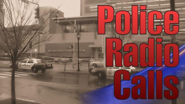 Police radio calls from courthouse shooting