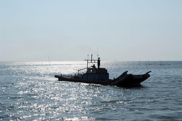 台西海岸作業船隻 (圖/雲林縣政府)