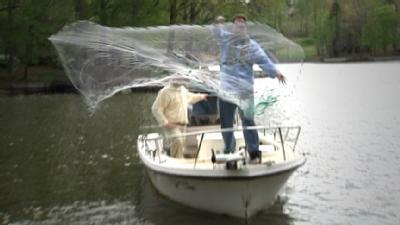 How To Find The Right Fishing Net
