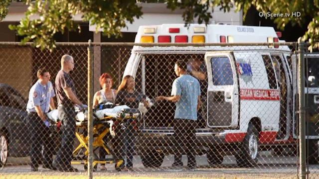 Pit bull attacks 1 and 2-year-old in San Bernardino