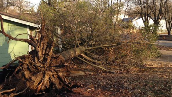 Damaging winds reek havoc on St. Louis region