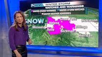 Blizzard Warning In The West