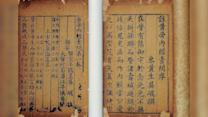 Nobel Prize 2015: Victory for Traditional Chinese Medicine?