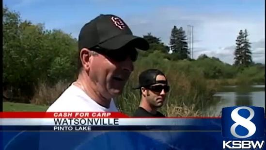 Carpageddon in Watsonville as city pays fishermen to catch carp