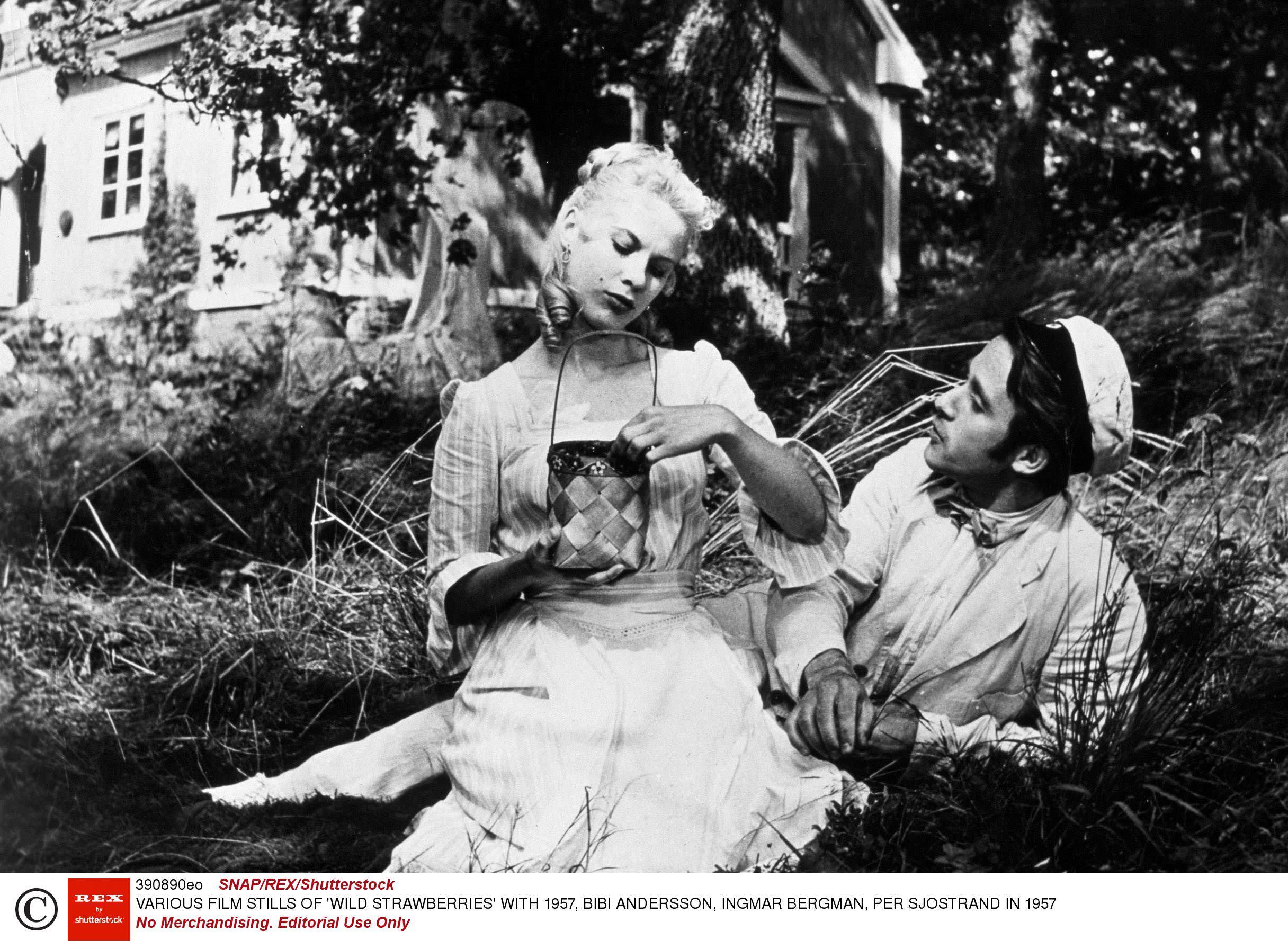 《野草莓》,1957。