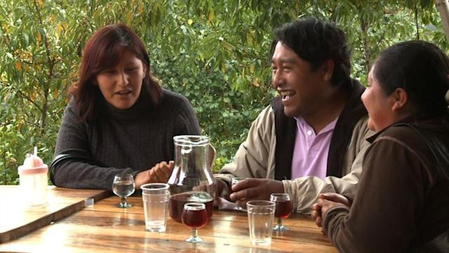 High-altitude Bolivian vineyard with a global ambition