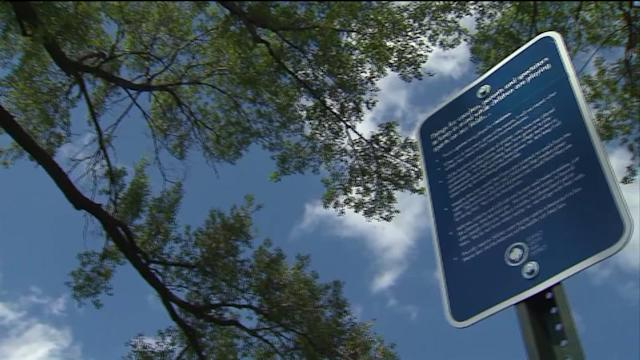 New Park Signs Tell Parents to Chill Out