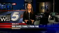 Dog saves Oklahoma family from house fire
