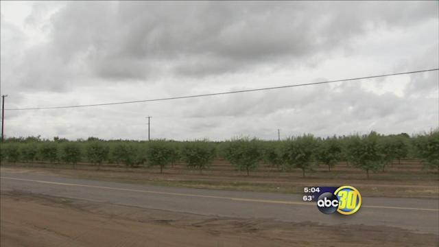 Storm offers break but no relief from drought