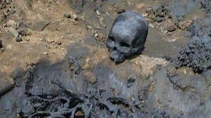Skeleton recovered from a field in WB