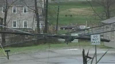 Trees, Wires Down In Rillton