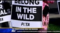 PETA protests outside circus fans' convention