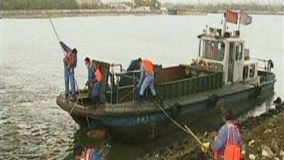 Raw: Scores of Dead Pigs in Chinese River