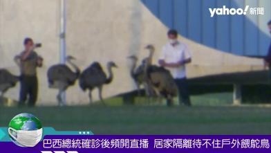 巴西總統確診待不住 冒險放風餵鴕鳥
