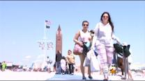 Beach Goers Flock To The Shore For Memorial Day