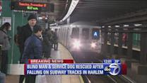 Blind man and service dog rescued off of subway tracks