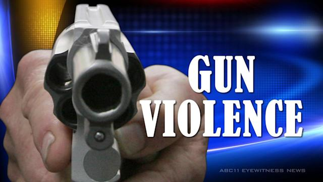 Fayetteville leaders discuss gun violence