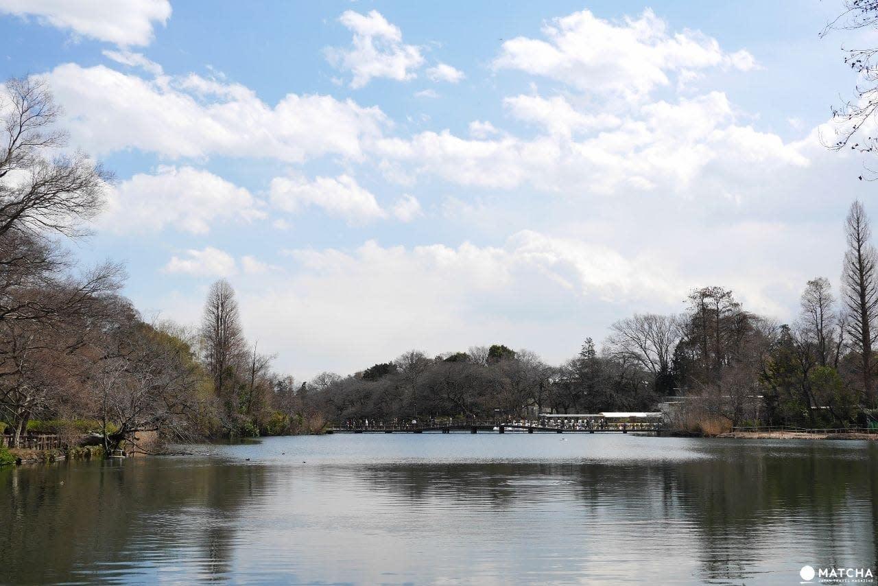 吉祥寺井之頭公園