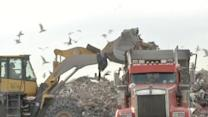 Loads of Sandy rubble heads to landfills