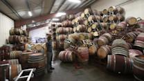 California wine country rocked by quake