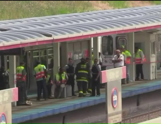 Woman Struck, Killed by Chicago Train After Dropping Phone on Tracks
