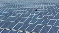 Interested in Solar Panels? You're Not Alone