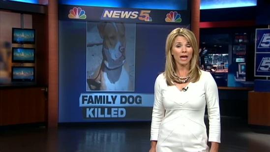 Family dog fatally shot by animal control officer
