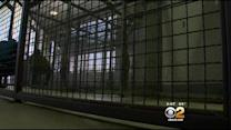 Inmates Win Settlement In Jail Violence Suit