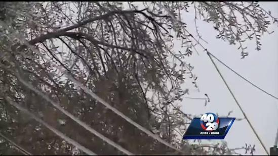 See how crews worked to keep downed trees off power lines