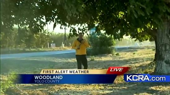 Winds bring red flag warning, allergy misery