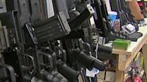 What does WH have to show for gun control push?