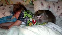 Mom Tries to Wake Up Son and Monkey to No Avail