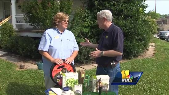 Water hoses, timers help keep gardens hydrated