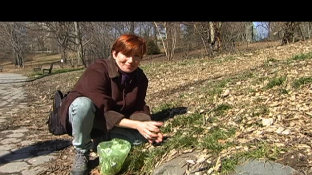 FOOD CURATED: Urban Spring Foraging (Part 1): Harvesting Wild Greens w/Leda Meredith