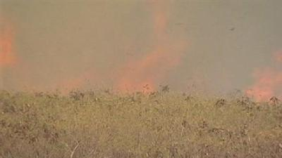 Fast-Moving Brush Fire Forced Evacuations; Burned Homeless Camps