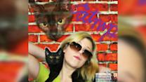 Cats get purr-fect retro glamour shots to help them get adopted