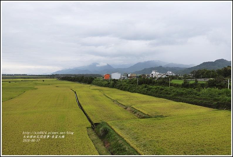 長富大橋(大地色塊)-2018-06-18.jpg