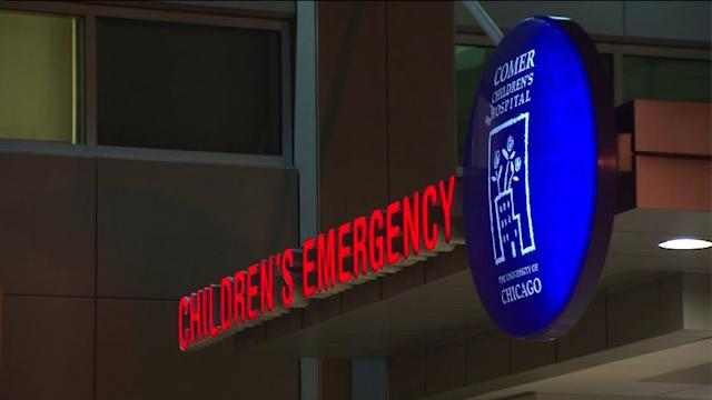 3-year-old Attacked by 2 Pitbulls
