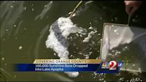 100,000 bass dropped into Lake Apopka